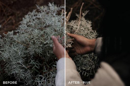Blue - Kevin Alejandro Lightroom Presets - FilterGrade