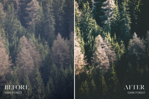 Dark Forest - Joshua Fuller Lightroom Presets Vol. 4 - Dolomites - FilterGrade