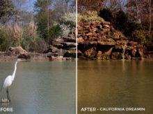 California Dreamin - Russell Cardwell Vivid 01 LUTs - FilterGrade