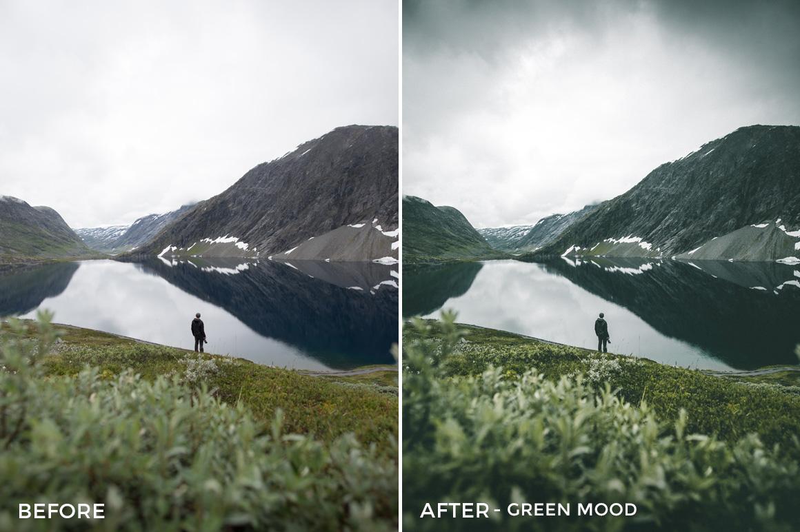 Green Mood - Twin the World Lightroom Presets Vol. 2 - FilterGrade