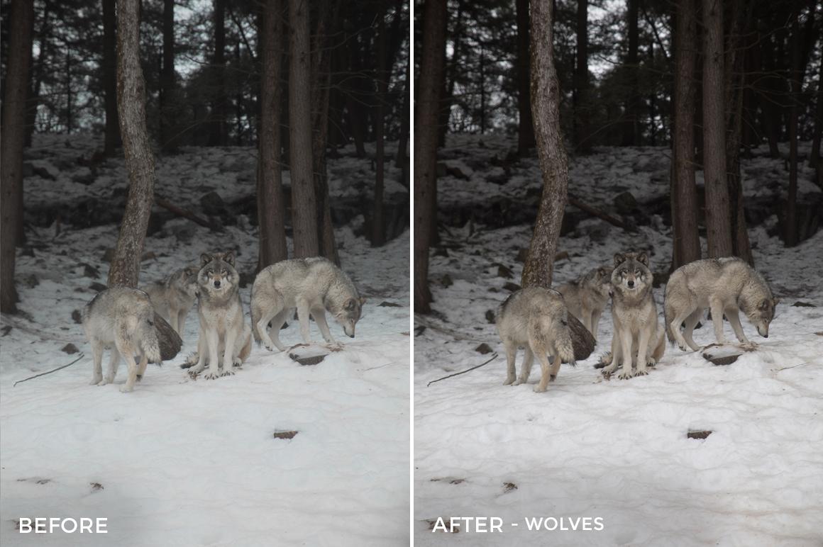 Wolves - Alex Tritz Lightroom Presets Vol. 4 (CANADA PACK) - FilterGrade