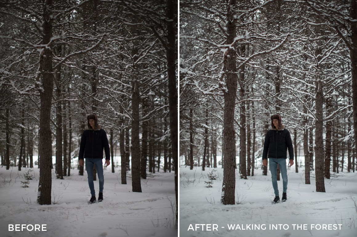 Walking into the Forest - Alex Tritz Lightroom Presets Vol. 4 (CANADA PACK) - FilterGrade