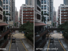 Stone Jungle - Dmitry Kirzhaev Hong Kong Lightroom Presets - FilterGrade