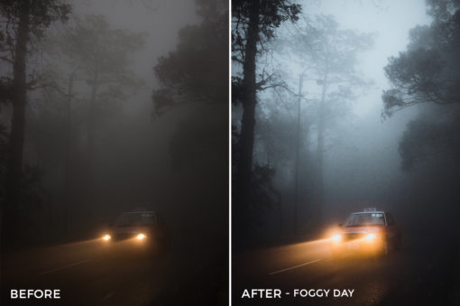 Foggy Day - Dmitry Kirzhaev Hong Kong Lightroom Presets - FilterGrade
