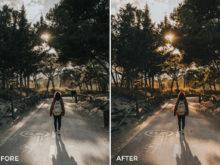 8 Joan Slye Landscape Lightroom Presets V2 - FilterGrade
