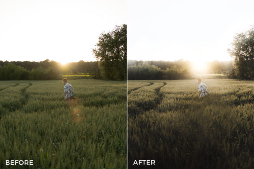 6 Joan Slye Landscape Lightroom Presets V2 - FilterGrade