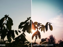 Nature Light - Viktor Szabo Summer Feels Lightroom Presets - FilterGrade