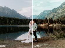 8 Nick Asphodel Moody Wedding Lightroom Presets - FilterGrade