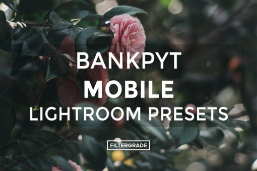 Bankpyt-Mobile-Lightroom-Presets-FilterGrade