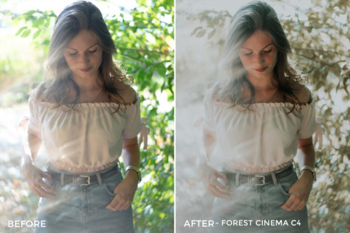 Forest-Cinema-C4-Thomas-Beerten-Forest-Cinema-Lightroom-Presets-FilterGrade