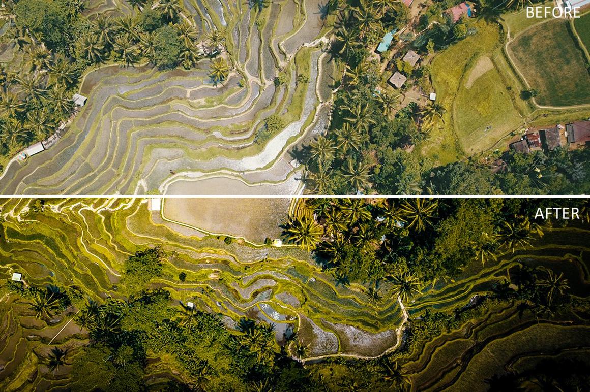 Rice-Field-Green-Bali-Lightroom-Presets-by-Adrian-Feistl-FilterGrade