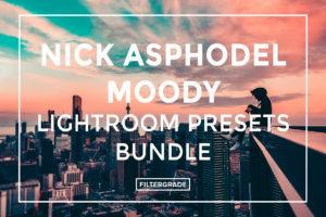Nick-Asphodel-Moody-Lightroom-Presets-Bundle-FilterGrade