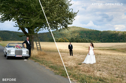 Open-Field-Destination-Wedding-Capture-One-Styles-by-Max-Libertine-FilterGrade