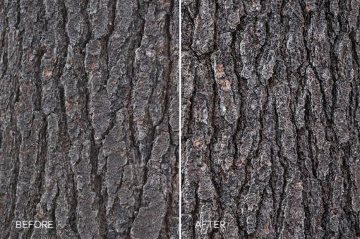 hdr bark details preset