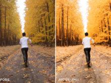 Fall-Nick-Verbelchuck-Lightroom-Presets-II-FilterGrade