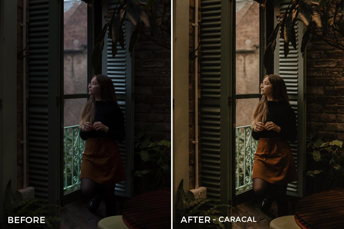 Caracal-1-Ragib-Choudhury-Lightroom-Presets-FilterGrade