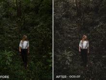 Ocelot-Ragib-Choudhury-Lightroom-Presets-FilterGrade