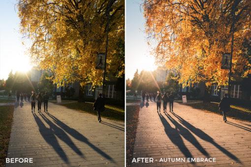 Autumn-Embrace-Tylersjourney-Lightroom-Presets-FilterGrade
