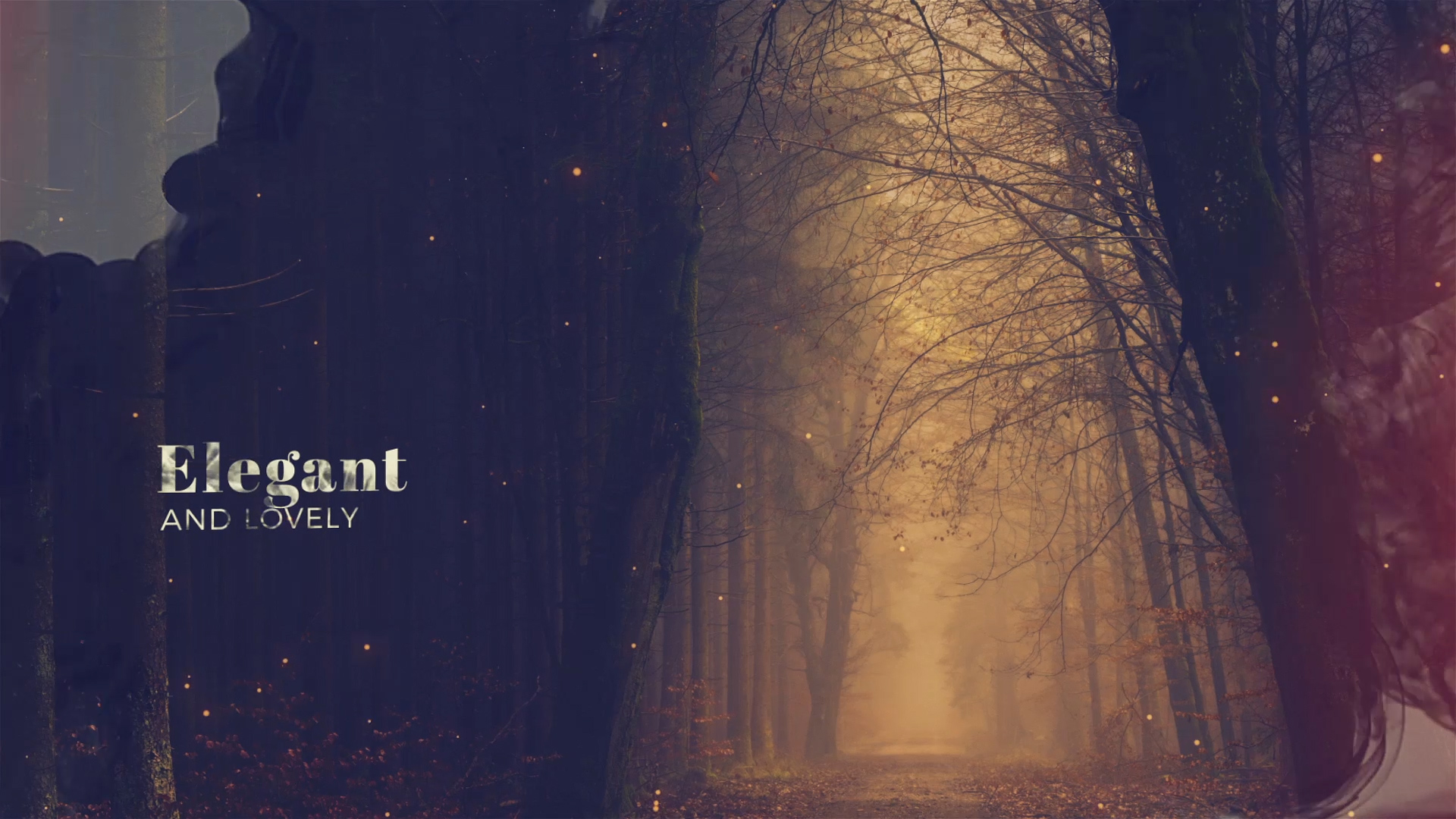 elegant slideshow template for after effects