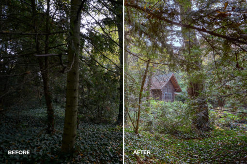 forest capture one styles