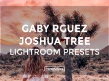 Gaby-Rguez-Joshua-Tree-Lightroom-Presets-FilterGrade