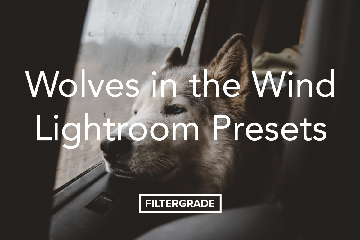 Wolves in the Wind Lightroom Presets Pack