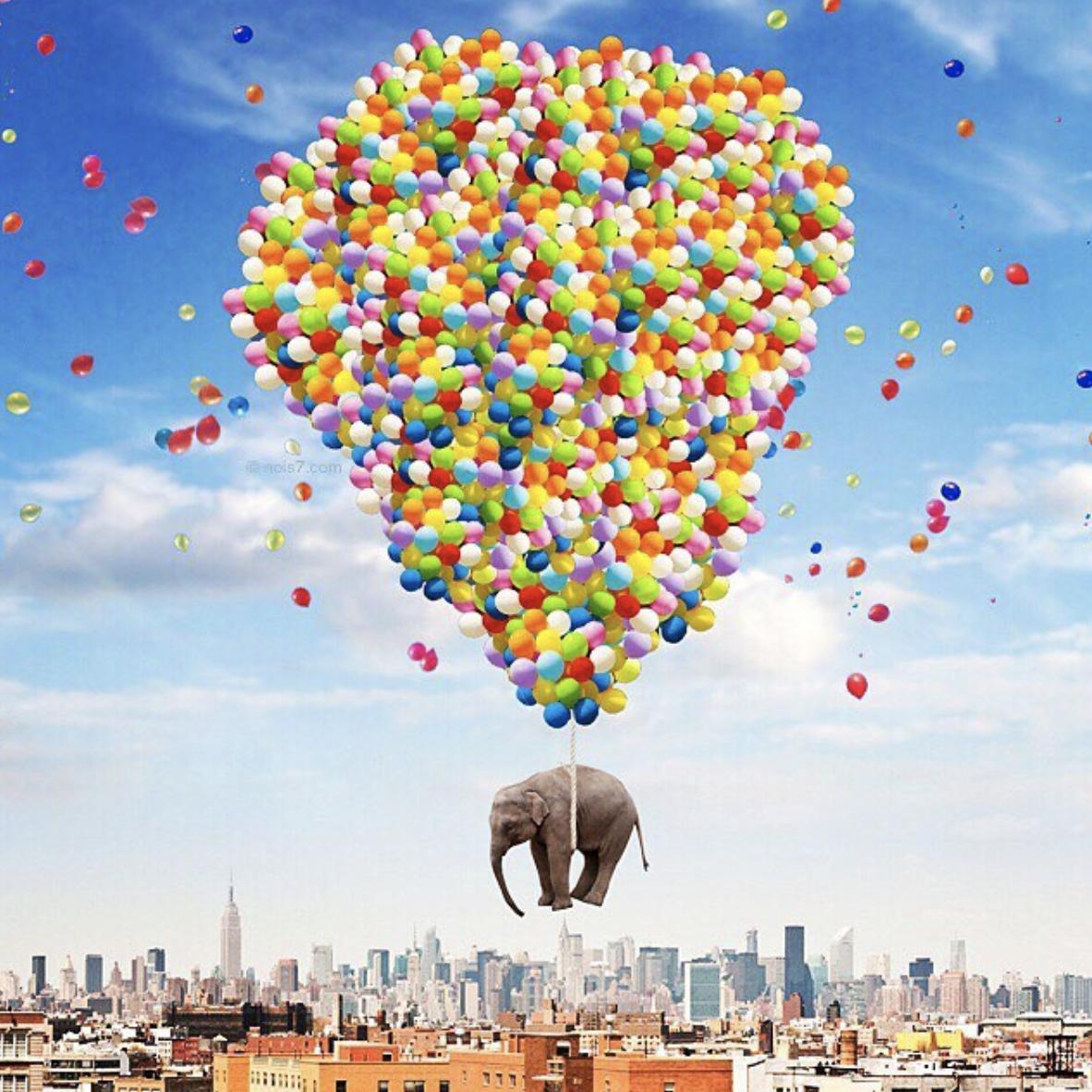 1 Nois7 Helium Balloon Photo Overlays - FilterGrade