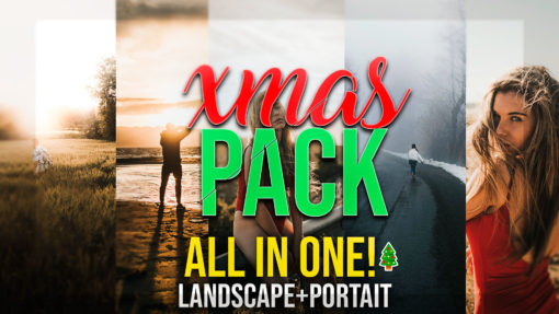 Joan Slye Christmas Lightroom Presets Bundle