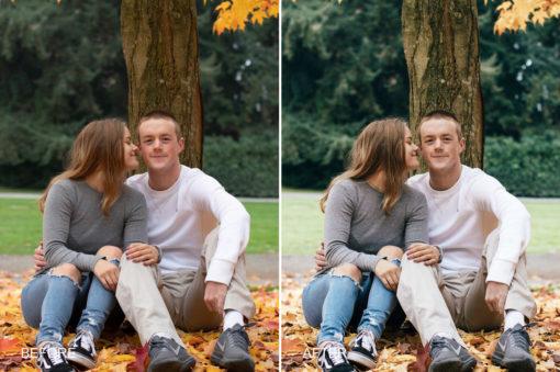 engagement photo preset
