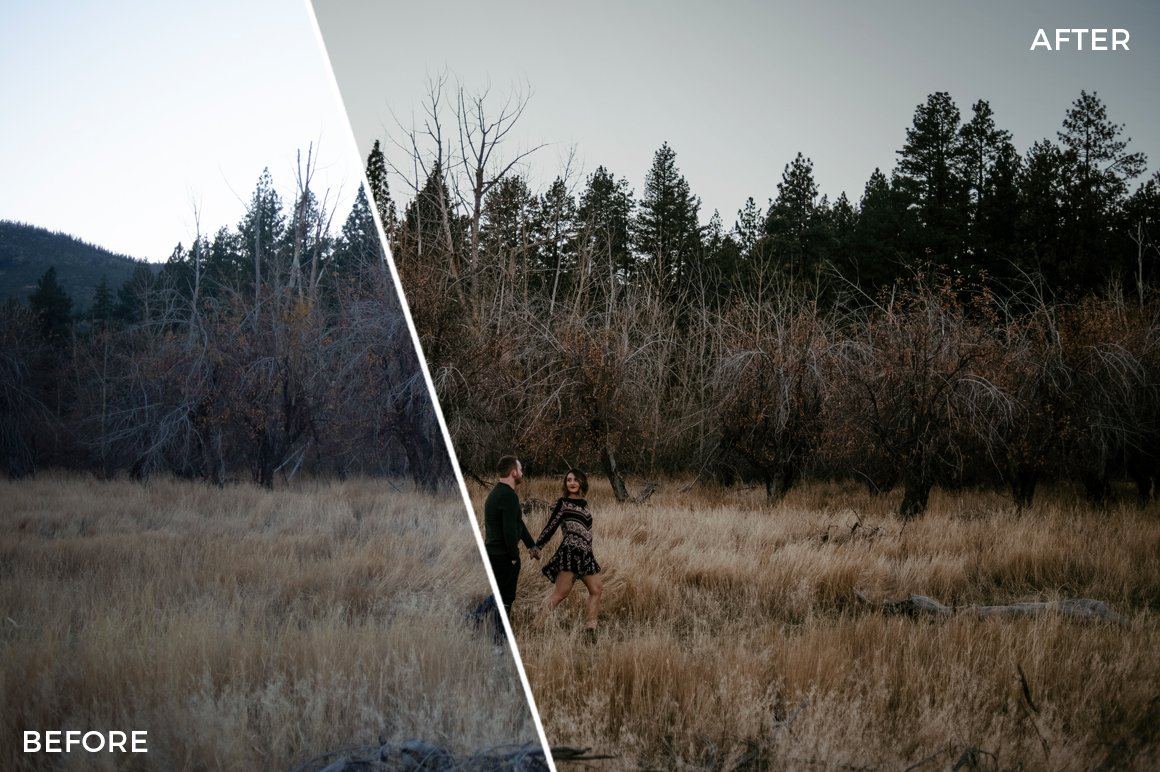 4-PhotoFolk-The-Wild-Collection-Lightroom-Presets-FilterGrade