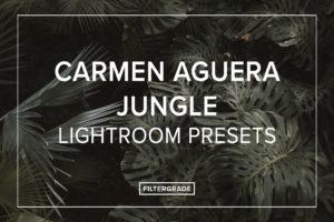 Carmen-Aguera-Jungle-Lightroom-Presetgs-FilterGrade