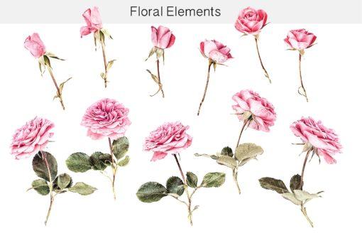 floral elements bundle