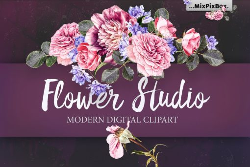 flower studio clipart graphics bundle
