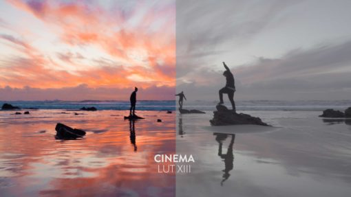 cinema luts