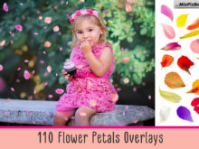 110 Flower Petal Overlays Bundle by MixPixBox