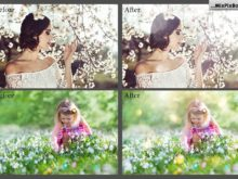 spring photo overlays flares