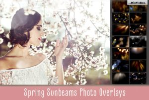 Spring Sunbeams Photo Overlays MixPixBox