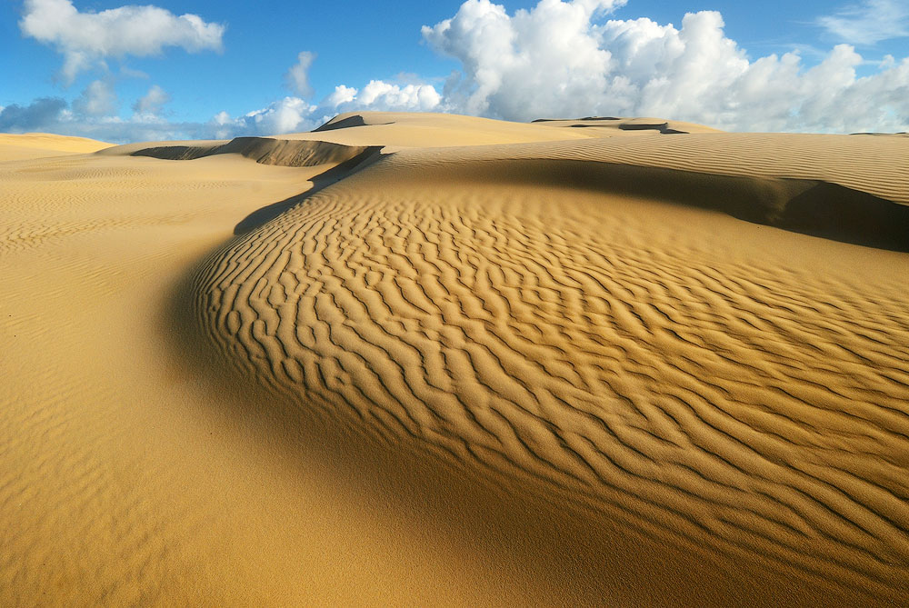 sand patterns desert anton gorlin