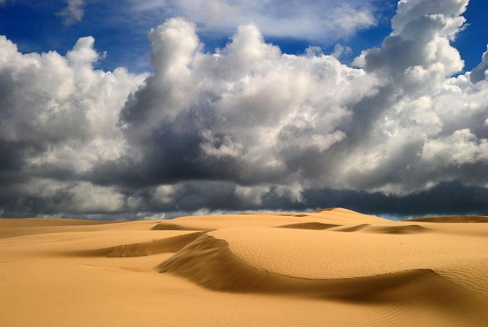 amazing desert photography