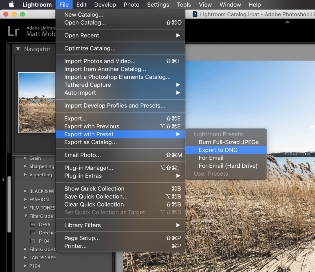 2 How to Convert Lightroom Presets to DNG Files - FilterGrade