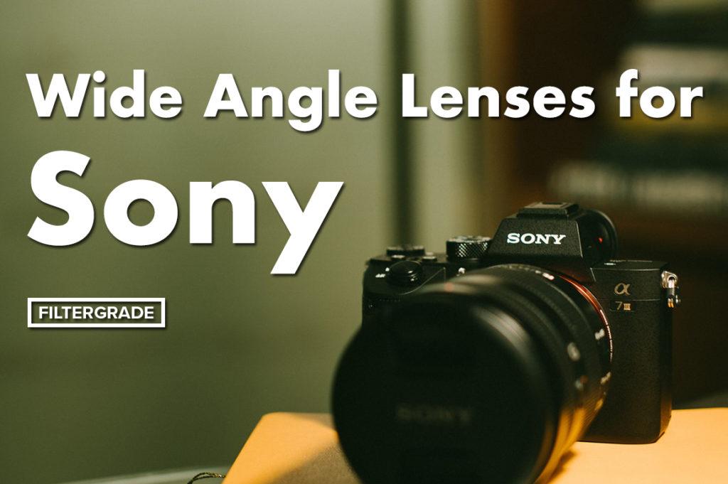7 Best Mirrorless Cameras Under $1000 in 2019 - FilterGrade