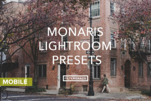Monaris-Lightroom-Mobile-Presets-FilterGrade