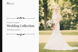 Neo Wedding Theme PS Actions & LUTs Bundle