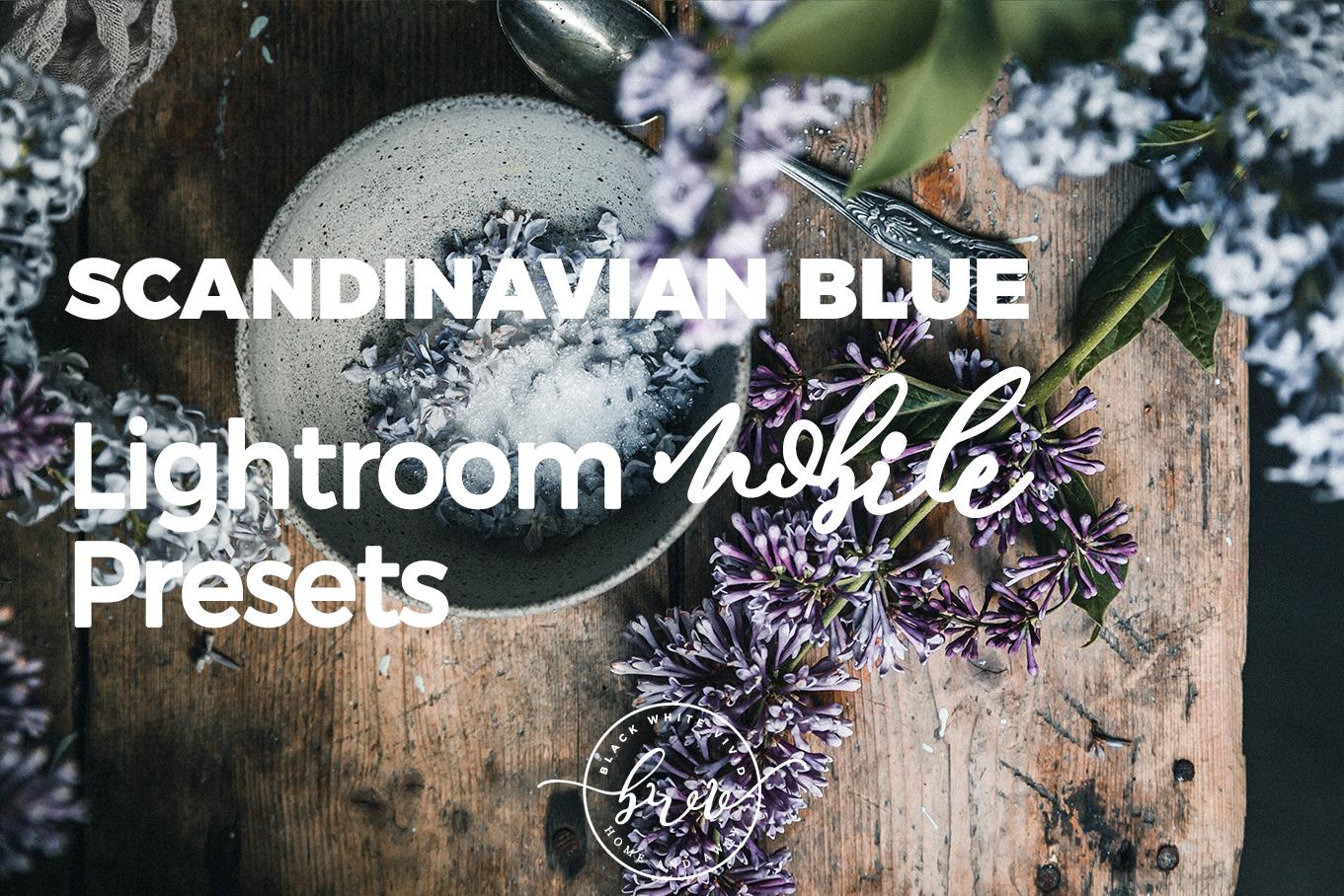 Scandinavian Blue MOBILE Lightroom Presets by black.white.vivid.