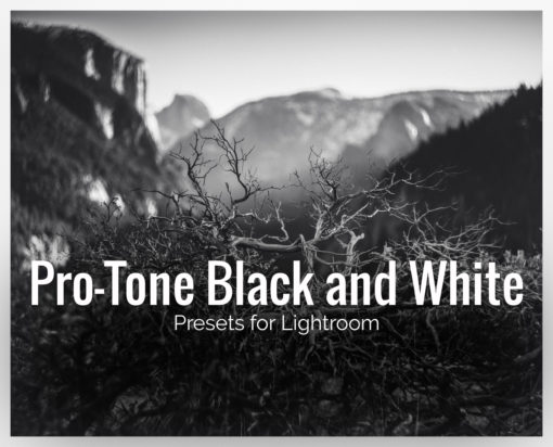 Pro-Tone Black and White LR Presets
