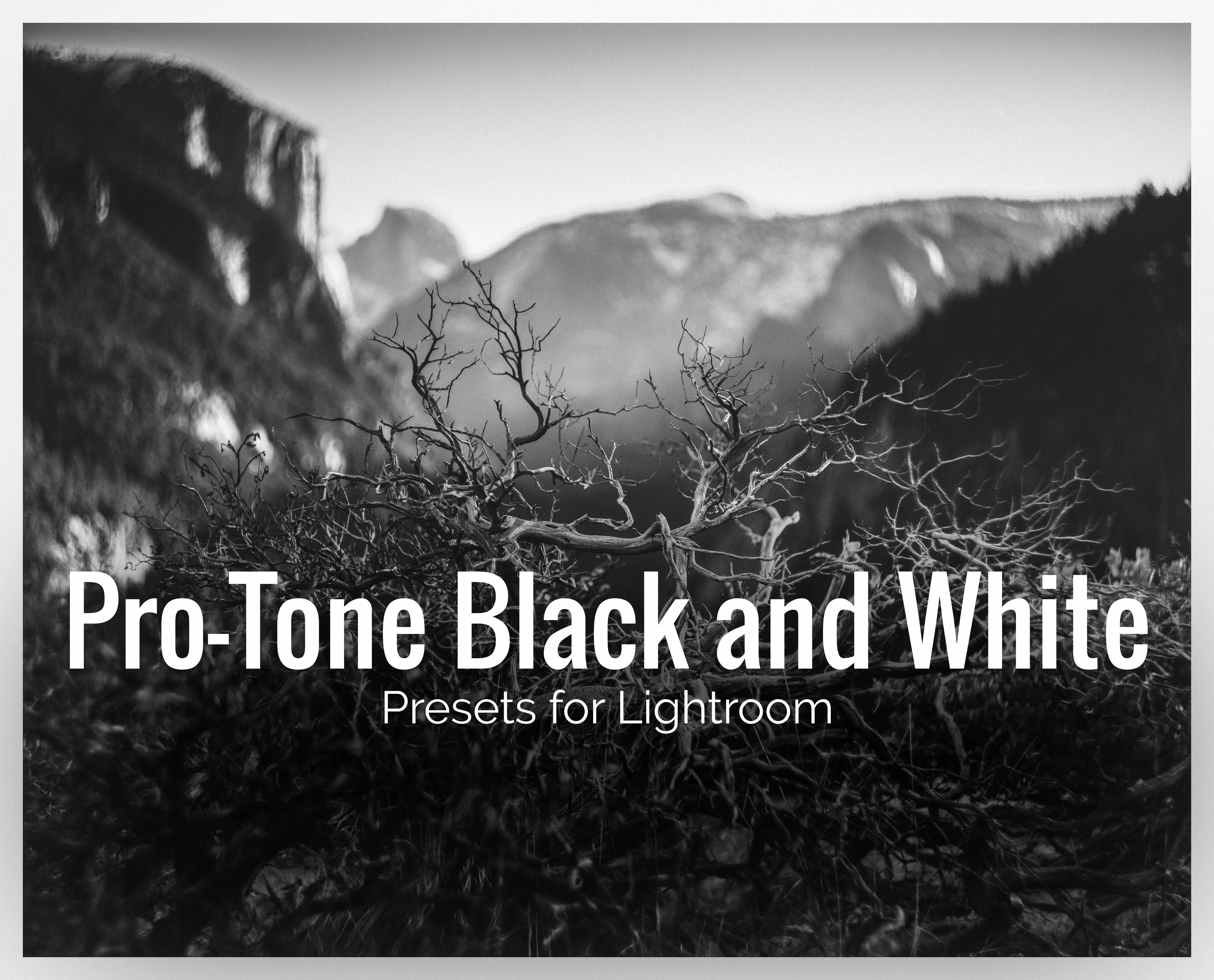 Pro-Tone Black and White LR Presets