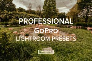 Thomas Beerten- Professional GoPro Lightroom Presets - FilterGrade