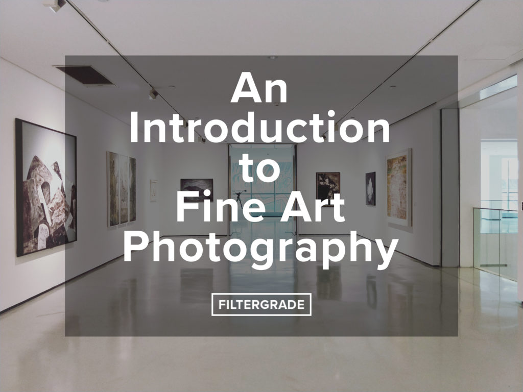 An Iintroduction to Fine Art Photography - FilterGrade