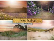 Sunset Backdrops + Backgrounds Bundle