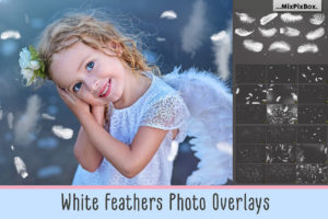 White Feathers Photo Overlays
